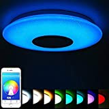 Ceiling Light Smart APP with Bluetooth Speaker, Dimmable White/Warm White Light and RGB
