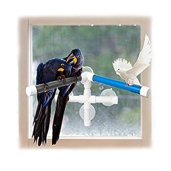 Furpaw Perchoir Perroquet, Perchoirs de Douche d'oiseaux Perches Perroquet Stand Support Jouet de Table Mural en Plasitque avec 4 Ventouses