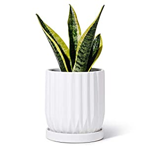 POTEY 050101 Ceramic Planter Pot – 4.9 inch Modern Lines Cylinder Planters with Drainage Hole & Attached Saucer for Indoor Plants Flower Succulent (1, Shiny White)