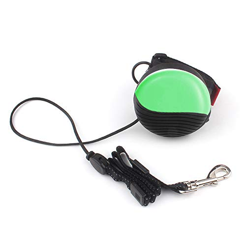 Retractable Dog Leash Extendable Puppy Running Leash Flexi Dog Leash for Large Dogs 25Meter Wrist Belt Strap HandsFree Leash for Big/Medium/Small Pest DogsampCats Green