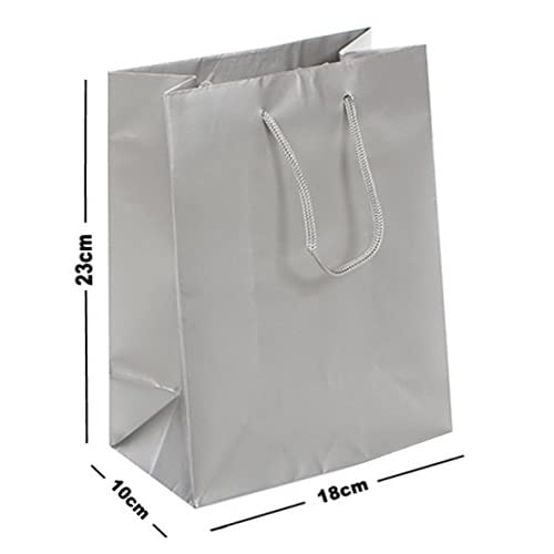 10 X MATT LAMINATED GIFT BAGS MEDIUM BIRTHDAY FAVOURS ROPE HANDLE BAG SILVER