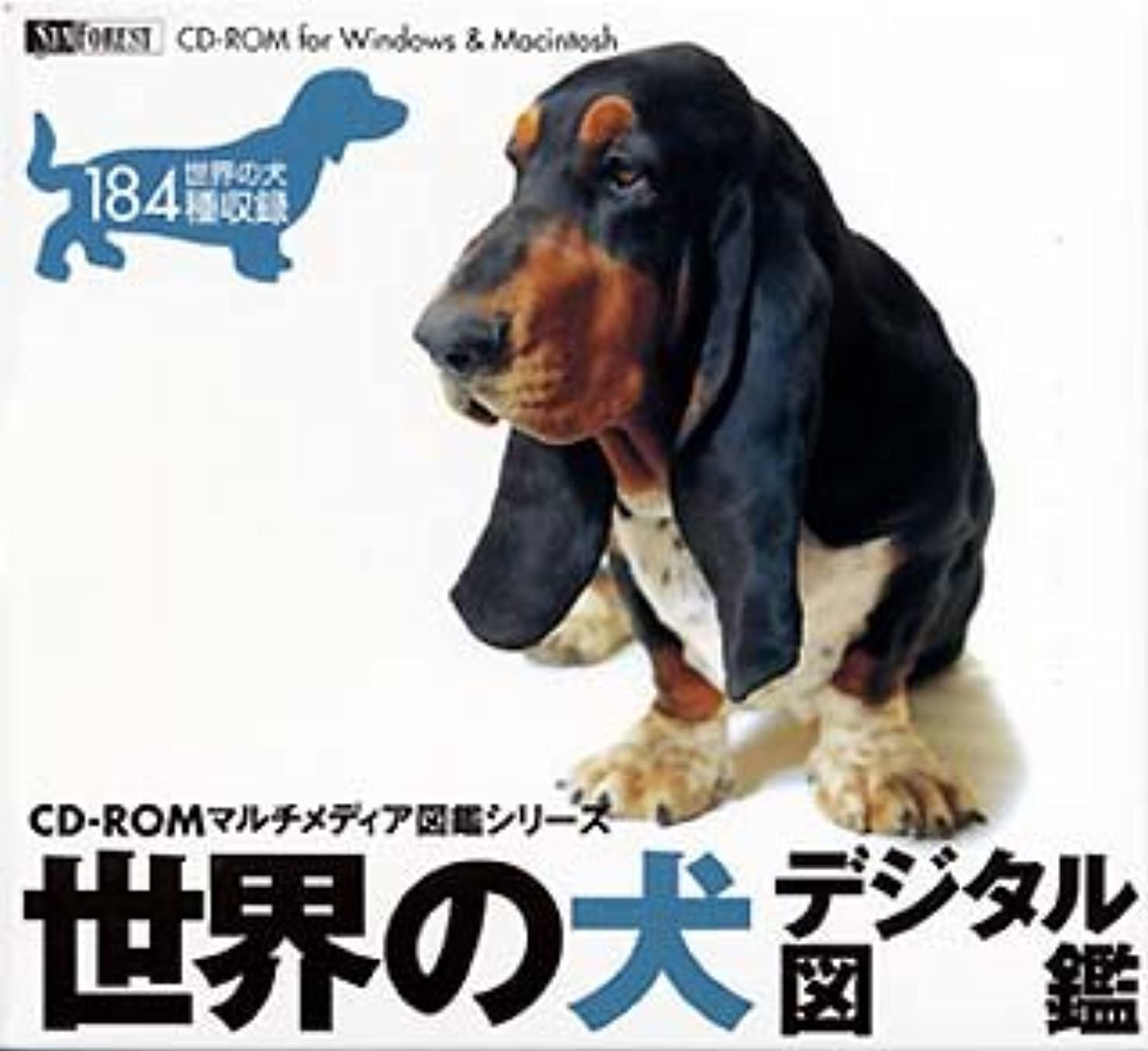 牛肉不従順染色世界の犬 デジタル図鑑