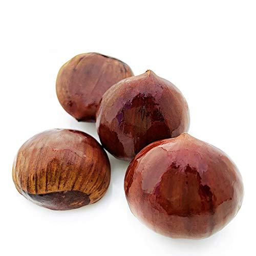 KEJORA Fresh Chestnuts 1 lb - Produce of Italy