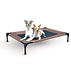 Elevated bed with dogs