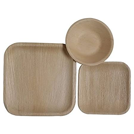 Amazon Com Catereco Square Palm Leaf Dinnerware Set Pack Of 75 25 Dinner Plates 25 Salad Plates And 25 Bowls Ecofriendly Disposable Dinnerware Heavy Duty Biodegradable Party Utensils Kitchen Dining