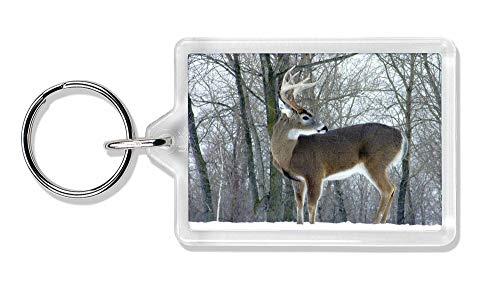 Advanta - Keyrings Deer Stag im Schnee Foto Schlüsselbund TierstrumpffüllerGeschenk