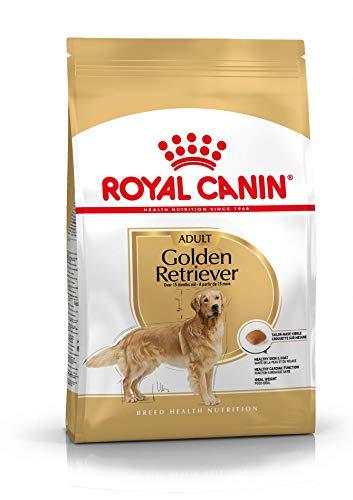 Royal canin race Golden Retriever croquette pour chien