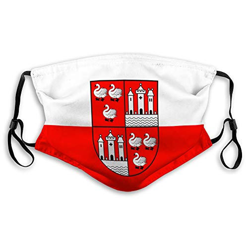 shjsertjs Mouth Shield Resuable Respirator Shield Flag of zwickau in Saxony in Germany Mouth Shield Resuable Respirator Shield
