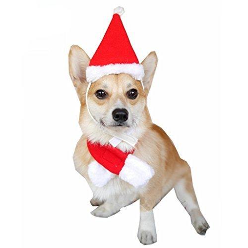 Visky Pet Dog Christmas Costume Dog Santa Hat with Scarf-S Alaska