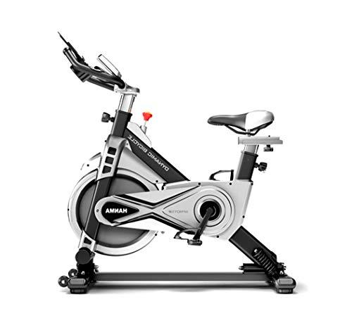 LOO LA Indoor Magnetic Control Oefening Bike, Swing On Both Sides Spin Bike Studio Cycles verstelbare Lebars & Seat On Board