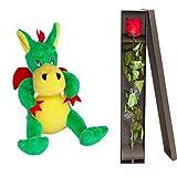 KKP Dragon y Rosa Sant Jordi, Regalo de Sant Jordi 2021, Pack de Peluche dragón y Rosa en Caja Regalo