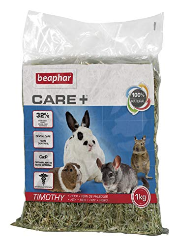 Beaphar Comida para Conejos T-Hay (1 kg) Care