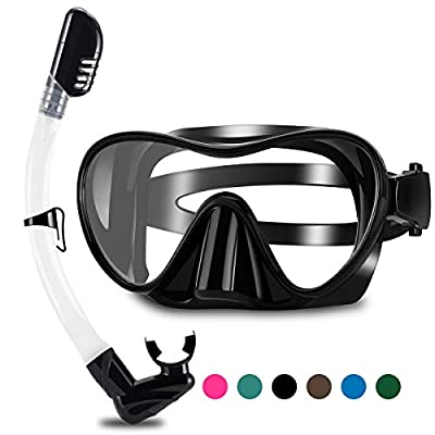 WSTOO 2020 Newest Dry Snorkel Set,Anti Fog Snorkel Mask,180 Degree Panoramic View Scuba Diving Mask,Snorkeling Gear for Adult&Youth (Lacquered Black)