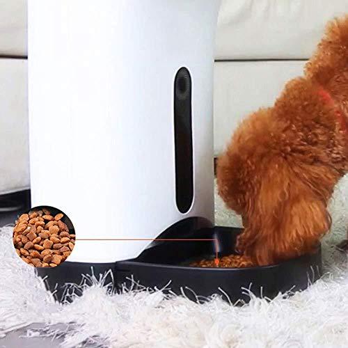 Aplicación De Dispositivo De Alimentación para Mascotas/Control Remoto Bidireccional Voz Perro Gato Capacidad Capacidad De Tazón Grabable Alimentación Doble Cuantitativa Abs Suministros Perros Gatos