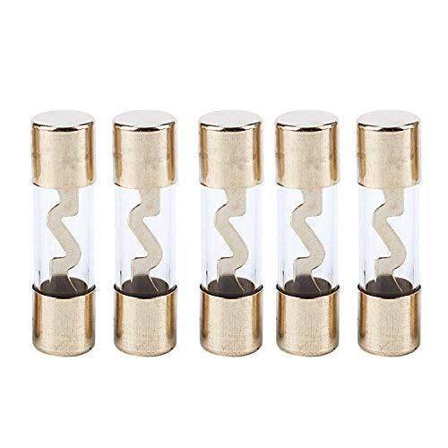 Ruellison Paquete de 5 Amplificador de Amplificador de Audio para AutomóVil Vidrio 40 a AMP AGU Fusible Chapado en Oro