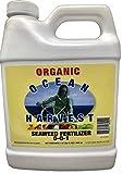 Liquid Seaweed Kelp Fertilizer by Ocean Harvest | Organic Fertilizer from Seaweed Extract for Plants | Organic Fertilizer for Vegetables | Liquid Kelp is a Liquid Fertilizer for Indoor Plants