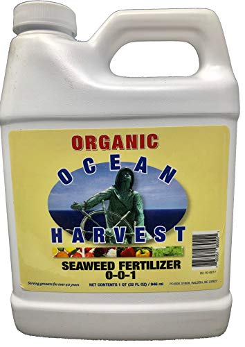 Liquid Seaweed Kelp Fertilizer by Ocean Harvest | Organic Fertilizer from Seaweed Extract for Plants | Organic Fertilizer for Vegetables | Liquid Kelp is a Liquid Fertilizer for Indoor Plants