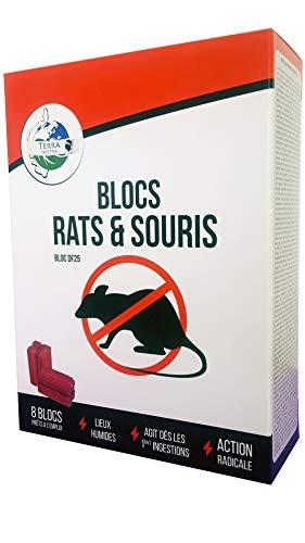 Terra Nostra Blocs Rats & Souris -...