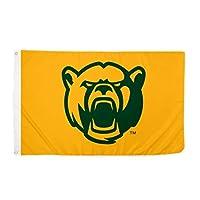 Desert Cactus Baylor University BU Bears NCAA 100% Polyester Indoor Outdoor 3 feet x 5 feet Flag (Style 9a) [並行輸入品]