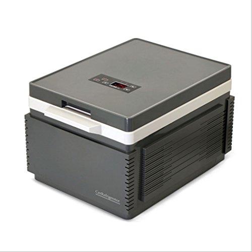 GGCG 12L Auto Kühlschrank, tragbarer Kühlschrank AC und DC Hotspot System Heizung gekühlt Thermostat Kosmetik Kühlschrank (Farbe : Schwarz)