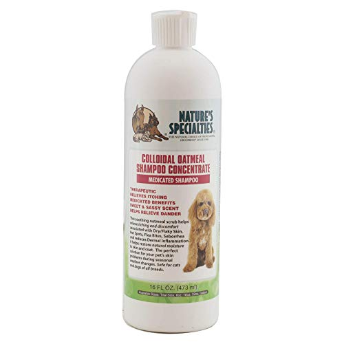 Nature's Specialties Colloidal Oatmeal Anti-Microbial Medicated Dog Shampoo for Pets, Concentrate 11:1, Made in USA, 16oz
