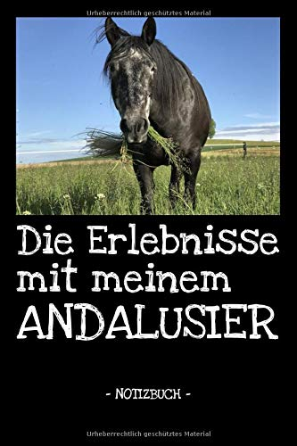 Die Erlebnisse mit meinem Andalusier: Pferde | Reiten | Notizbuch | Tagebuch | Fotobuch | Hobby | Schule | Geschenk | liniert + Fotocollage | ca. DIN A5