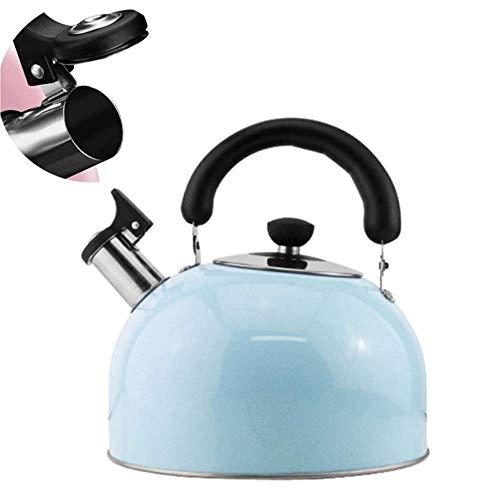 Theepot, Roestvrijstalen Kookplaat Waterkoker Inductie Kookplaat Fluitketel Thee Koffiepot Campingketel met hittebestendig handvat voor thuiskantoor