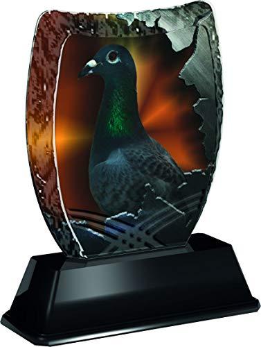 Trophy Monster Iceberg Pigeon Bird Award Free - Plato Grabado para trofeos y Ligas, Hecho de acrílico Impreso (3 tamaños)