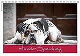 Hunde-Spruchreif (Tischkalender 2021 DIN A5 quer)