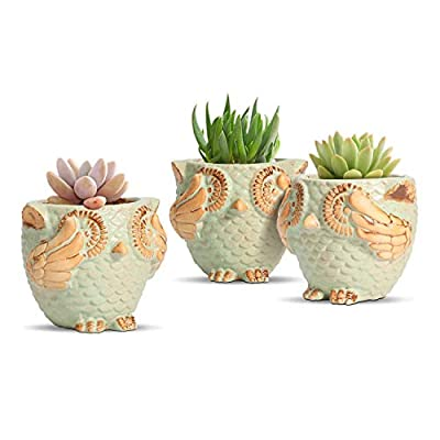 T4U 4 Inch Owl Succulent Pots Set of 3, Cute Animal Ceramic Succulents Planter Green Small Plant Cactus Holder Container for Home and Office Decoration Handcrafted Gift
