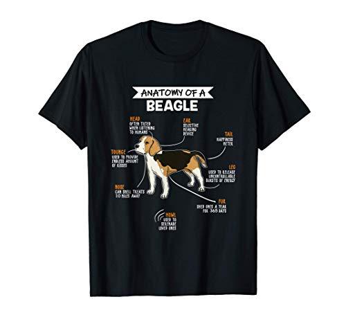 Anatomy Of A Beagle Regalo Divertente Cane Maglietta