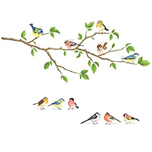 DECOWALL DS-8036 Garden Birds Kids Wall Stickers Wall Decals Peel and Stick Removable Wall Stickers for Kids Nursery Bedroom Living Room (Small) décor