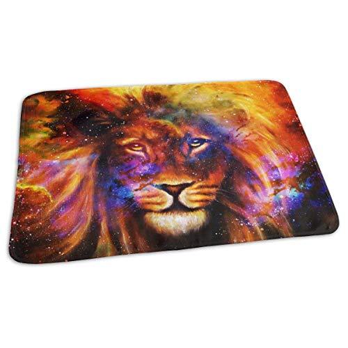 Lion in Cosmic Space Housse de matelas à langer réutilisable de voyage pour bébé 27,5 x 19,7 cm
