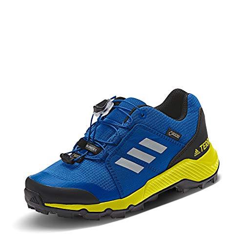 Adidas Terrex GTX K, Zapatillas de Deporte Unisex Adulto, Multicolor (Belazu/Griuno/Amasho 000), 39 1/3 EU