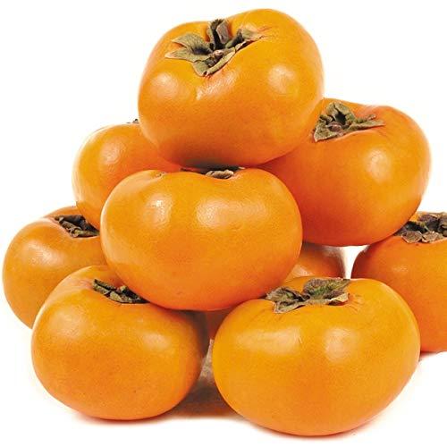国華園 和歌山産 富有柿 15kg 1組