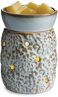 CANDLE WARMERS ETC. Illumination Fragrance Warmer- Light-Up Warmer for Warming Scented Candle Wax Melts and Tarts or Essential Oils to Freshen Room, Succulent