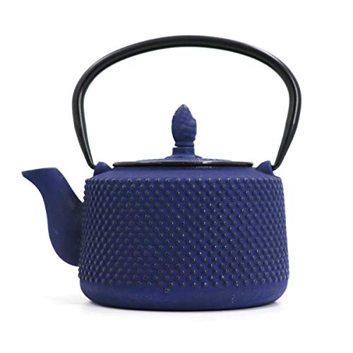 RTY Japanisches Blau Tetsubin Gusseisen Teekanne Tee-Kessel for Kochplatte mit Edelstahl Infuser 800ml