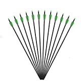 Vsduiria 30 inch Carbon Archery Hunting Arrows for Compound Bow & Recurve Bows Longbow-Target Practice Shooting Arrow for Kids Youth and Adult-Spine 500 with Removable Nock & Tips Points (12 Pack)