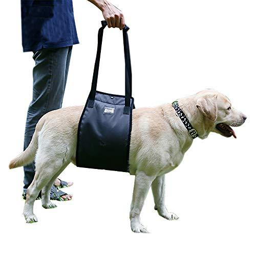 TFENG Hundegeschirr Tragehilfe, Hunde Gehhilfe Rehahilfe mit Griff, Geschirr für Hunde Verletzungen und Arthritis (Grau, L)