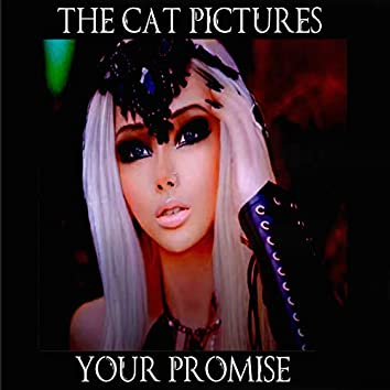 Your Promise