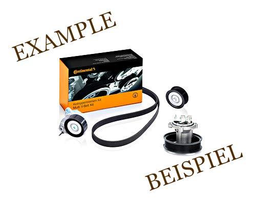 Contitech 6PK1318WP1 Kit Riemen Zubehör + Wasserpumpe