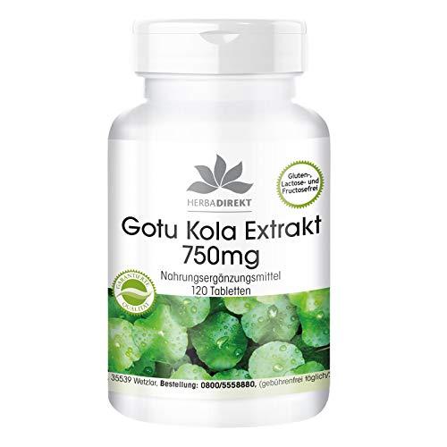 Gotu Kola 750mg - hochdosierter Extrakt - vegan - 120 Tabletten - mit Zink und Vitamin C