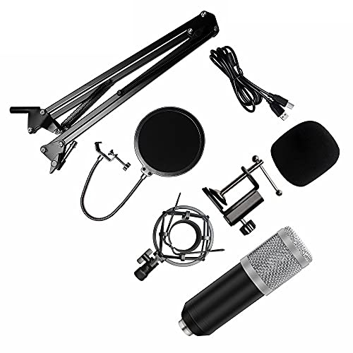 YZQ Conjunto De Micrófono BM-800, Kit De Micrófono con Condensador con Suspensión De Micrófono Ajustable, Montaje En Choque De Metal Y Filtro Pop De Doble Capa,J