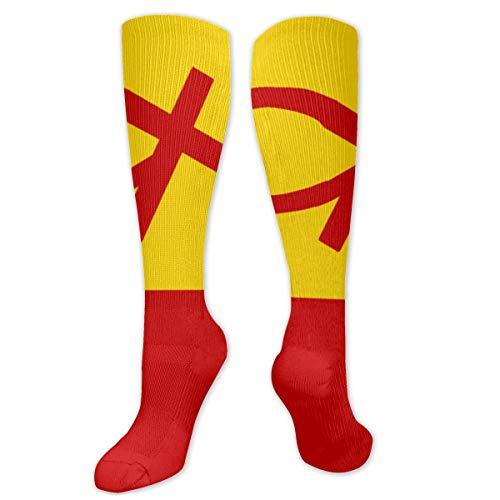 Ruïne vlag van christelijk communisme mannen vrouwen atletische voetbal jurk sokken kunst bemanning sokken