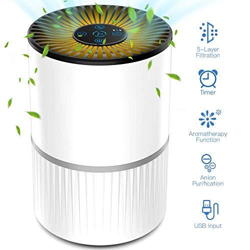Purificador de Aire Alergia con Filtro HEPA y Carbón Activado, con Fi