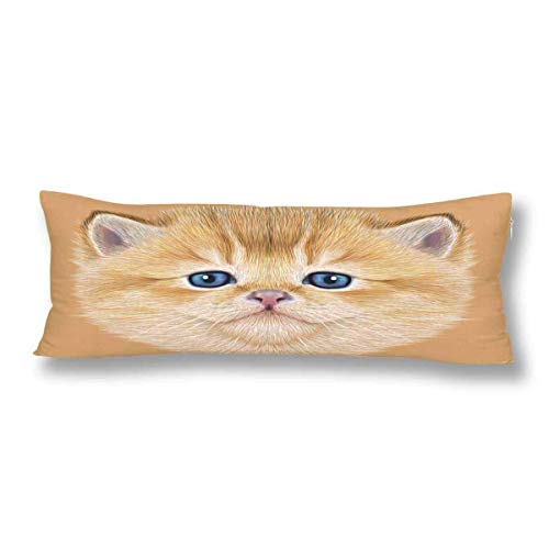 CiCiDi Body Pillow Case 5ft(50cm X 150cm) Portrait of Domestic Kitten Cute Peach Kitten Cat Soft Cotton Machine Washable with Zippers Maternity/Pregnancy Pillow Cover