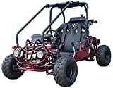 SmartDealsNow Powersports Gokart TAOTAO GK110 is 110cc Fully Automatic Gas gokart with Reverse : Choose Your Color