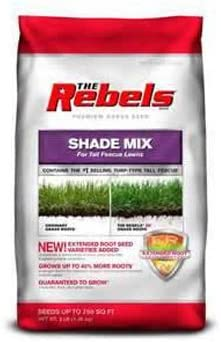 Mesa Mall Pennington 100081775 The Rebels Tall Mix Shade Selling rankings Fescue Grass Seed
