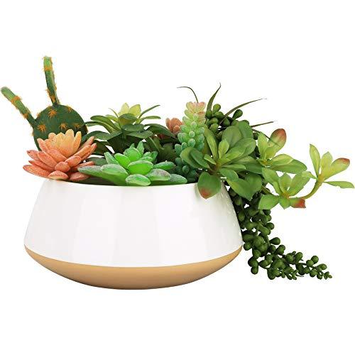 LA JOLIE MUSE Große Pflanzenbehälter für Sukkulenten, Keramik Blumentöpfe für drinnen und draußen mit Abflussloch für Pflanzen Blumen, 20 cm, sandig beige & weiß