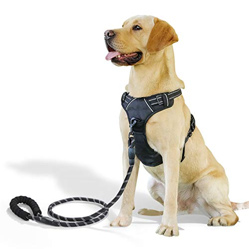 Raining Pet No Pull Dog Harness Large Dogs Leash Set, Reflective Dog Harness Large Breed, Black